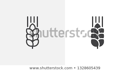 Buğday kulaklar versiyon natürmort beyaz ekmek kaşık Stok fotoğraf © Lynx_aqua