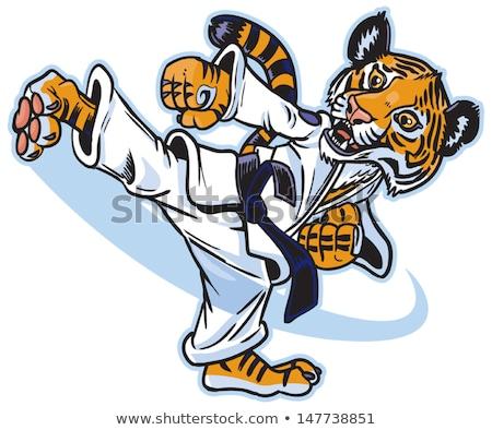 Vector cartoon tiger cub cute young martial arts Stock photo © heliburcka