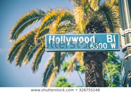 Sokak işareti hollywood yol sokak yazı trafik Stok fotoğraf © meinzahn