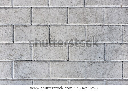 Figured Gray Pavement Slabs. Stock photo © tashatuvango