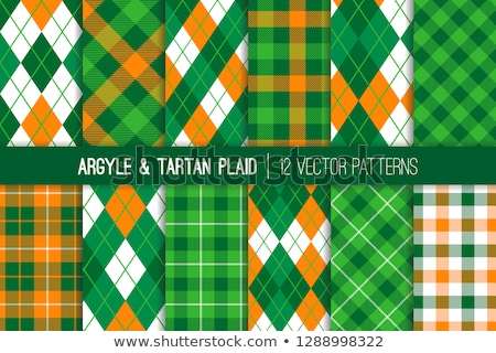 Vector argyle seamless pattern Stock photo © ElaK