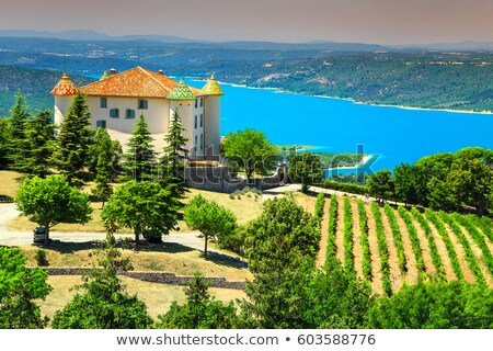 vineyard and St Croix Lake at background, Verdon Gorge, Provence Stock photo © phbcz