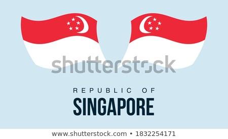 地図 フラグ ボタン 共和国 シンガポール ベクトル ストックフォト © Istanbul2009