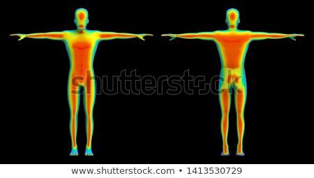 Görüntü radyatör kızılötesi oda zemin Stok fotoğraf © smuki