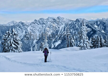 Snowshoers at viewpoint Stock photo © eppicphotos