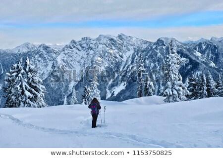Iki Vancouver Kanada şehir doğa kar Stok fotoğraf © eppicphotos