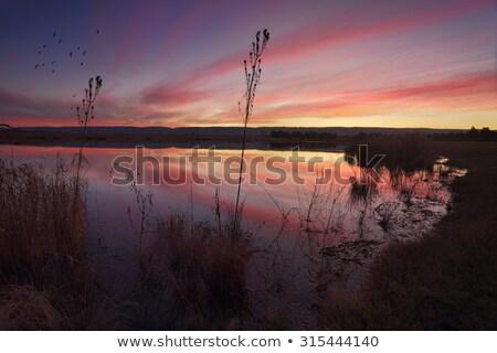 Sunset views over Duralia Lake Penrith Stock photo © lovleah