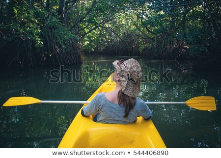 Canoe in mangrove Stock photo © smithore