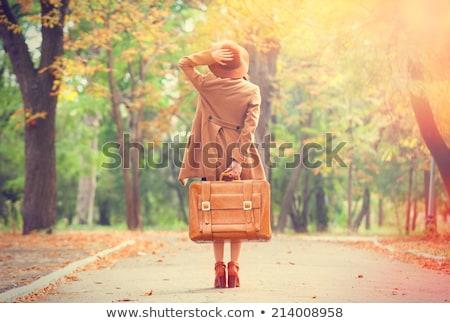 üzleti · út · fiatal · boldog · szőke · nő · tok · első · osztály - stock fotó © dolgachov
