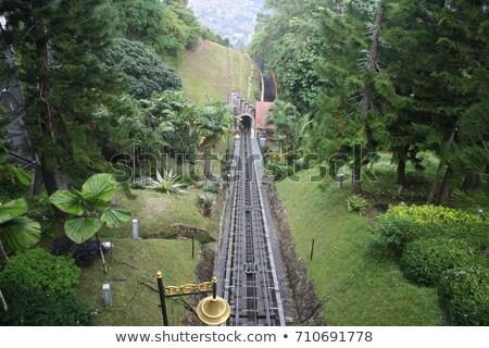 Villamos vasút Malajzia fa fű természet Stock fotó © tang90246