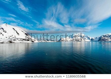 Icebergs floating in the arctic sea in Svalbard Stock photo © dinozzaver