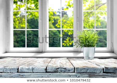 Windows diferente diseno sillas madera marco Foto stock © bluering