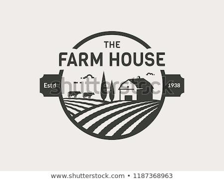 Granja frescos granero blanco ilustración casa Foto stock © bluering
