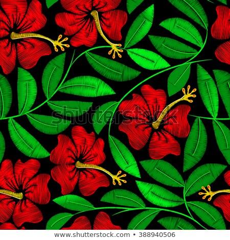 trópusi · hímzés · hibiszkusz · növény · végtelen · minta · virág - stock fotó © adamfaheydesigns