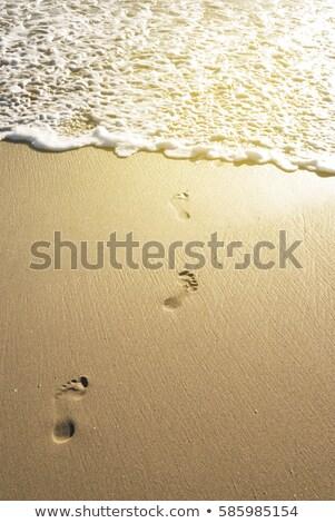 Ayak izleri su plaj kumu uzak doku Stok fotoğraf © avdveen