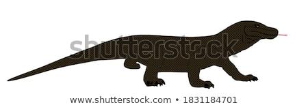 giant lizard stock photo © pressmaster