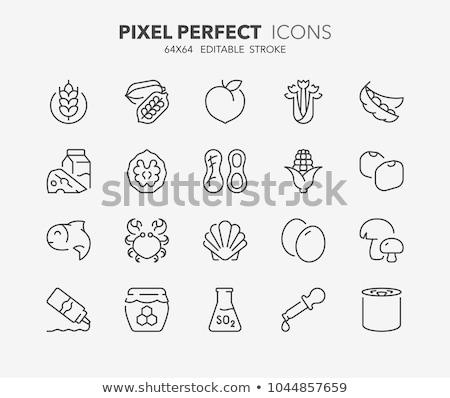 Peach line icon. Stock photo © RAStudio