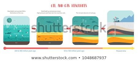 Terra seção transversal água fonte grama praia Foto stock © SwillSkill