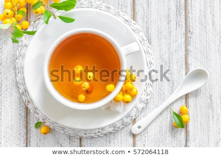 свежие · травяной · чай · Ягоды · белый · Кубок - Сток-фото © yelenayemchuk