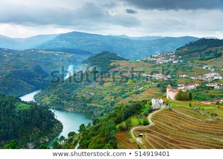 Portugal vin région rivière collines nuages Photo stock © joyr