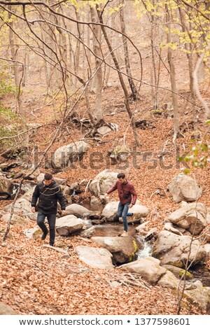 caminante · río · tropicales · selva · tropical · borneo · árbol - foto stock © monkey_business