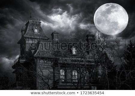 Casa fantasma assustador árvore prado Foto stock © psychoshadow