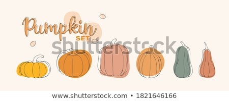 vector collection of halloween postcards stock photo © sonya_illustrations