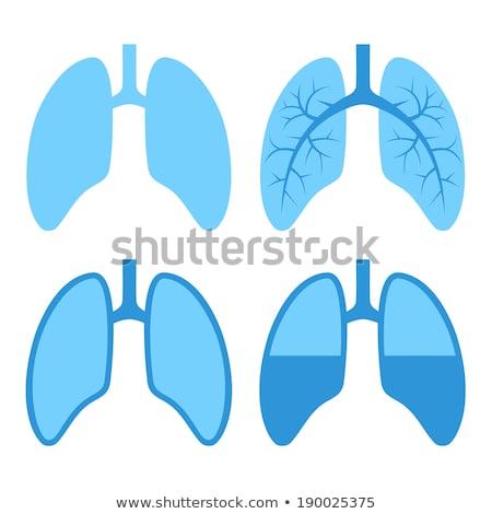 silhouetteof lung disease black Stock photo © Olena