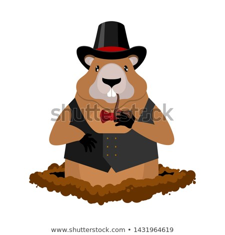 Groundhog Day. Marmot in hat and with pipe. Rodent aristocrat. I Stock photo © MaryValery