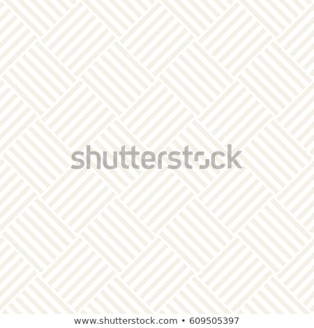 Repeating Geometric Stripes Tiling. Vector Seamless Monochrome Subtle Pattern Stock photo © Samolevsky