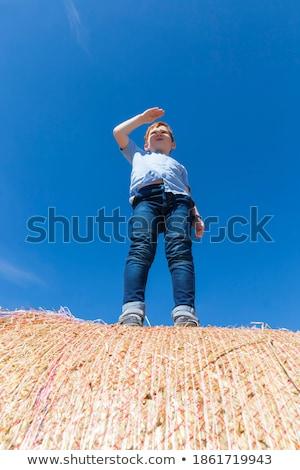 Férfi fiú áll széna bála természet Stock fotó © IS2