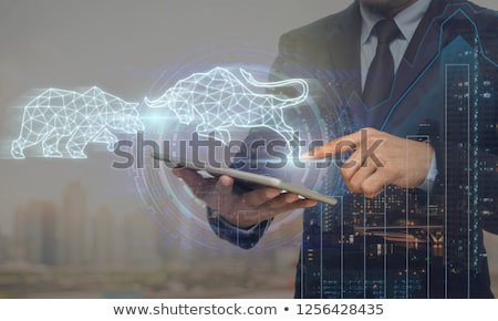 stock market concept design showing bull and bear stock photo © sarts