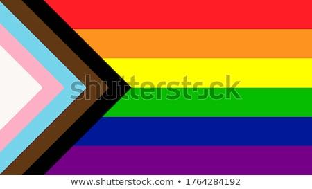 Vector regenboog vlag seks liefde paar Stockfoto © doomko