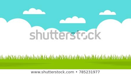 verano · cielo · vector · resumen · web · Internet - foto stock © cammep