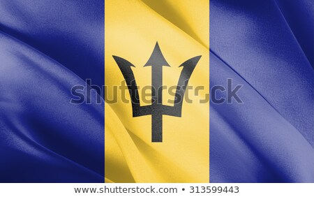 Barbados · integet · zászló · vektor · kép · absztrakt - stock fotó © Amplion
