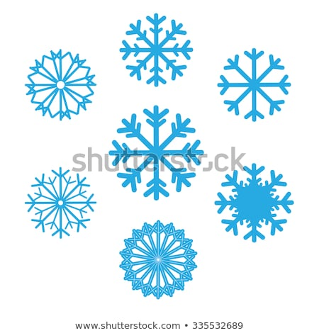 Snowflakes Icons Set of Different Shape and Forms Stock photo © robuart