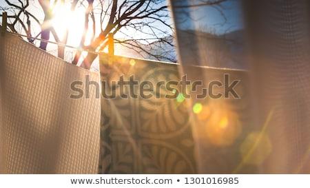washed laundry drying outside stock photo © artush