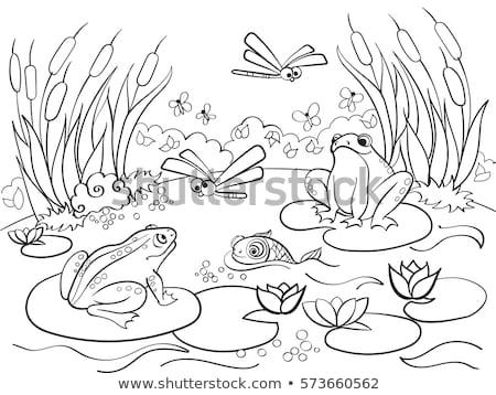 пруд · сцена · иллюстрация · природы · фон · дождь - Сток-фото © colematt