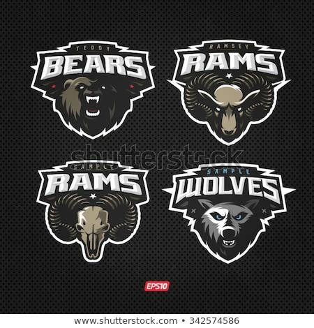 Sport logo design with baseball player Stock photo © colematt