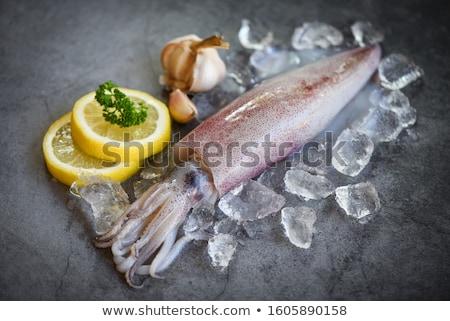 Tintahal illusztráció közelkép boldog tenger fehér Stock fotó © colematt