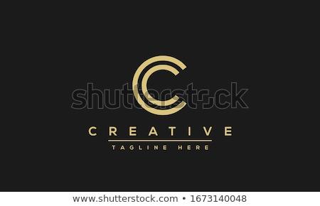 Levél ikon vektor logotípus szimbólum terv Stock fotó © blaskorizov