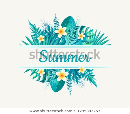 monstera branches and vanilla blossoms vector stock photo © robuart