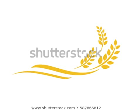 Weizen Symbol Landwirtschaft Bauernhof logo natürlichen Stock foto © Terriana