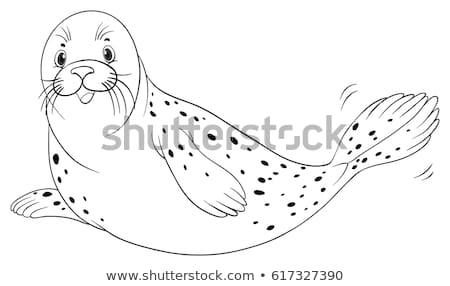 Drafting animal for seal Stock photo © colematt