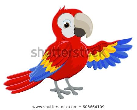 Cartoon pappagallo verde separato badge uccello Foto d'archivio © mumut