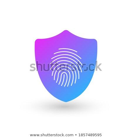 finger print security shield logo design element vector illustration isolated on white background stock photo © kyryloff