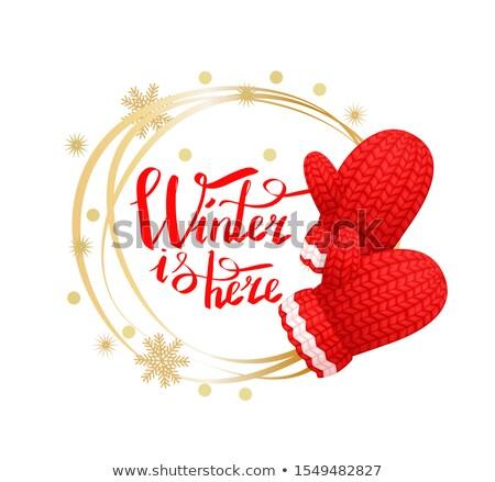 冬 ここで 花輪 雪 手袋 ポスター ストックフォト © robuart