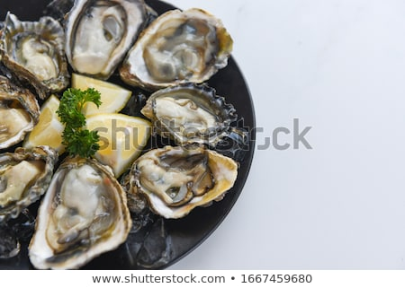 Raw oysters on the slate board Stock photo © Alex9500