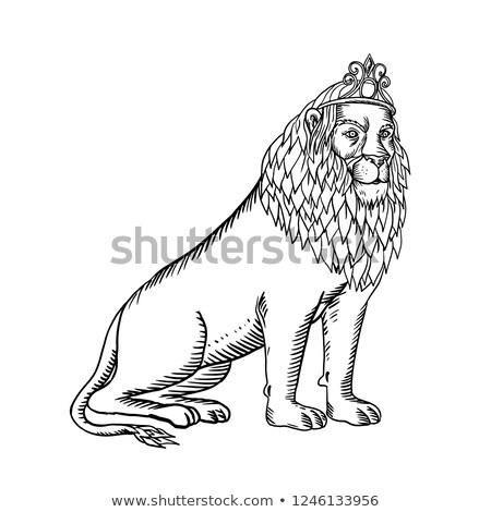 Lion Wearing Tiara Sitting Scratchboard Stock photo © patrimonio