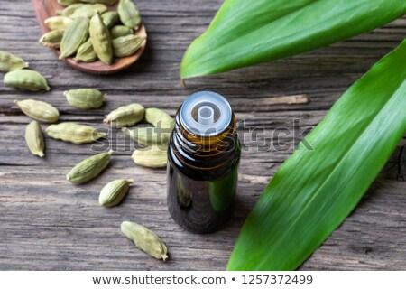 bouteille · ensemble · semences · verre · beauté - photo stock © madeleine_steinbach